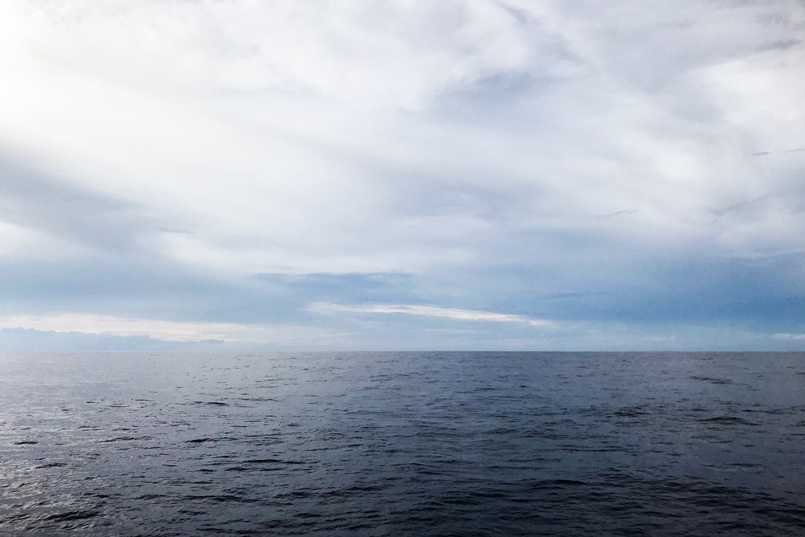 View of the doldrums from 11th Hour Racing Team on Day 11 of the Transat Jacques Vabre.