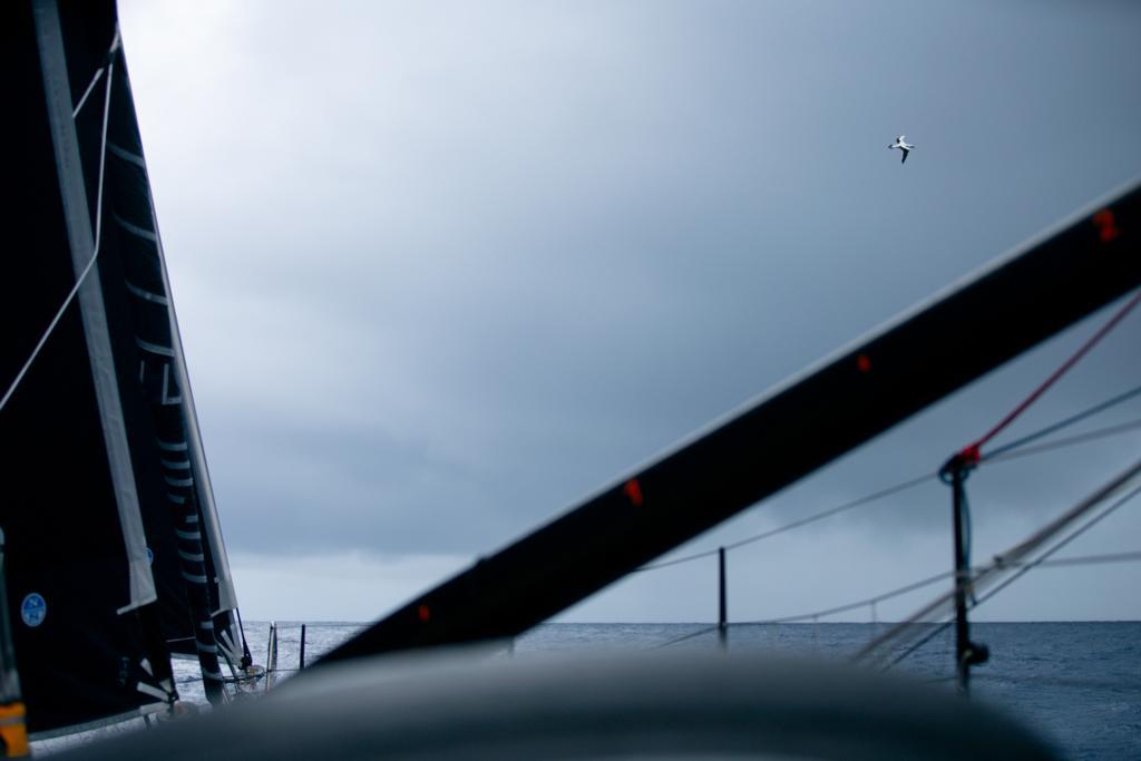 11th Hour Racing Team IMOCA 60 transatlantic